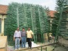 4m Decorative Palm Branch