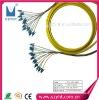 OM3 LC,FC,SC fiber optic bundle pigtail  12C